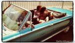 1965 Chrysler 300 convertible Calendershoot AnimalShelter